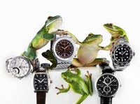 Frogs and Watches
