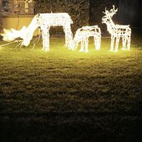 Lit-Up Deer Ornaments On Lawn 20055018311| 写真素材・ストックフォト・画像・イラスト素材|アマナイメージズ