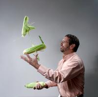 A Man juggling corn