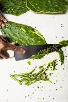 slicing cactus