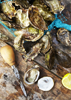 Fresh oysters on a wooden table, ready to be cracked and eaten. 20055021111| 写真素材・ストックフォト・画像・イラスト素材|アマナイメージズ