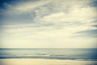 People walking by on the beach, kinky yellow faded look 20055022945| 写真素材・ストックフォト・画像・イラスト素材|アマナイメージズ