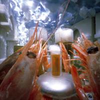 Beergarden With Shrimp
