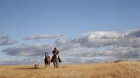 Cowboy  ponying  sorrel horse on gray mare
