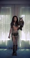 topless woman holding an owl 20055025531  写真素材・ストックフォト・画像・イラスト素材 アマナイメージズ