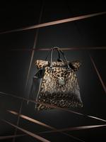 Animal print shoe, bag, APRO