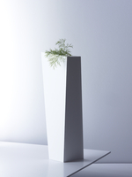 dill on plinth