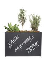 Sage, rosemary and thyme herb garden