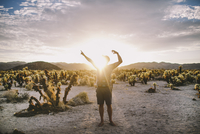 Silhouette of Man in Desert Pointing with Cactus and Sunset