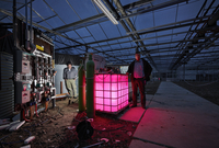 two men in greenhouse with installation for producing useful bacteria