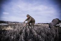 Goose hunter setting decoys in place at first light 20055034596| 写真素材・ストックフォト・画像・イラスト素材|アマナイメージズ
