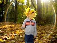 Boy holding autumn leaf in front of his face