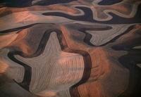 Aerial, Wheat fields, Palouse, Washington 20056004115| 写真素材・ストックフォト・画像・イラスト素材|アマナイメージズ