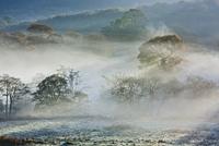 Fog rolling through snowy landscape