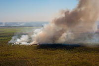 Aerial of smoke rising from a bush fire, Northern Territory, Australia