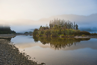 Misty Waitangitanoa River at sunrise, Westland National Park, UNESCO World Heritage Site, on the West Coast of South Island, New