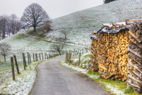 Winding road and wood pile near St. Trudpert Monastery, Munstertal, Black Forest, Baden-Wurttemberg, Germany, Europe