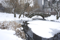 The Gapstow Bridge in early morning after a snowfall in Central Park, New York State, New York City, United States of America