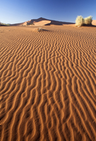 Sand Ripples on one of the ancient orange dunes of the Namib Desert at Sossusvlei, near Sesriem, Namib Naukluft Park, Namibia, A