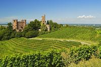 Ortenberg Castle, Ortenberg, Ortenau, Baden-Wurttemberg, Germany, Europe