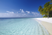 Tropical island and beach, Maldives, Indian Ocean, Asia