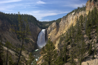 View of Lower Falls from Red Rock Point, Grand Canyon of the Yellowstone River, Yellowstone National Park, UNESCO World Heritage