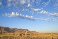Boulders on the plains below the Brandberg mountain range at sunrise, Damaraland, Namibia, Africa
