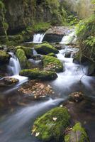 Watersmeet, Exmoor National Park, Devon, England, United Kingdom, Europe
