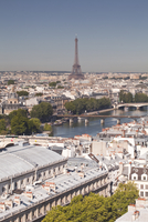 Looking over the rooftops of Paris to the Eiffel Tower, Paris, France, Europe