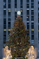 The Christmas tree and decorations in Rockefeller Center,  New York City, New York State, United States of America, North Americ