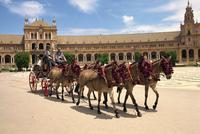 Horses and trap in the Plaza de Espana, in Seville, Andalucia, Spain, Europe 20062001773  写真素材・ストックフォト・画像・イラスト素材 アマナイメージズ