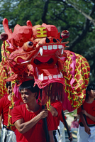 Chinese Dragon Dancers for National Day on 9th August, Singapore, Southeast Asia, Asia 20062003278| 写真素材・ストックフォト・画像・イラスト素材|アマナイメージズ