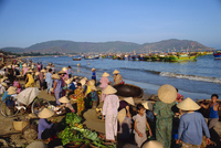 Daily fish market on beach, Quinhon City, Vietnam, Indochina, Southeast Asia, Asia