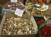 Mushrooms for sale in the market in Bologna, Emilia Romagna, Italy, Europe