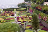 A terrace planted in geometric shapes with contrasting red and green plants in the Jardim Botanico, Funchal, Madeira, Portugal, 20062004401| 写真素材・ストックフォト・画像・イラスト素材|アマナイメージズ