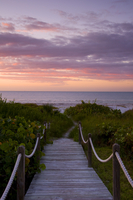 A boardwalk over sand dunes and tropical vegetation leading to the beach at sunrise, Sanibel Island, Florida, United States of A