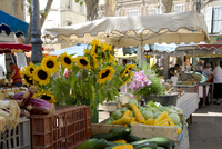 Sunflowers and vegetables on sale in a weekly market in Town Hall Square, Aix-en-Provence, Bouches-du-Rhone, Provence, France, E