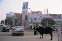 The Metropolitan Mall, Delhi, India, Asia