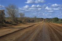 Empty road across Sertao, Bahia Eastern Highlands, Brazil, South America