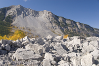 Frank Slide (massive rockslide of limestone from Turtle Mountain that buried town in 1903), Crowsnest Pass, southern Alberta, Ro
