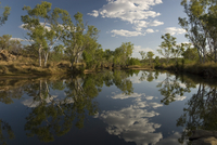 Gibb River at its crossing by the Kalumburu Road, off the Gibb River Road, The Kimberley, Western Australia, Australia, Pacific