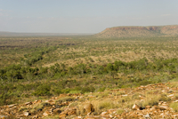 The Kimberley Plateau, seen from the eastern section of Gibb River Road, Western Australia, Australia, Pacific
