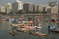 Colaba fishing fleet lands its catch in Back Bay, southern end of Mumbai city, Maharashtra, India, Asia