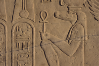Detail of relief carving of the crocodile god, Kom Ombo, Egypt, North Africa, Africa