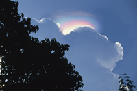 Rainbow atmospheric effect above cloud above the Ijen Plateau, Java, Indonesia, Southeast Asia, Asia