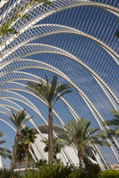 Palm trees in L'Umbracle in the City of Arts and Sciences in Valencia, Valenciana, Spain, Europe 20062008181| 写真素材・ストックフォト・画像・イラスト素材|アマナイメージズ