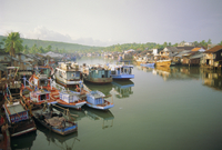 Fishing trawlers in the harbour, Phu Quoc island in south west of the country, Vietnam 20062008242| 写真素材・ストックフォト・画像・イラスト素材|アマナイメージズ