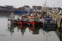 Fishing boats, Howth harbour, County Dublin, Republic Ireland, Europe