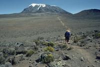 Mount Kilimanjaro, UNESCO World Heritage Site, Tanzania, East Africa, Africa 20062009785  写真素材・ストックフォト・画像・イラスト素材 アマナイメージズ