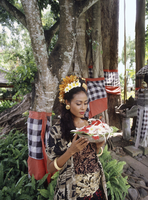 Balinese girl with offerings under a banyan tree in Bali, Indonesia, Southeast Asia, Asia 20062010000| 写真素材・ストックフォト・画像・イラスト素材|アマナイメージズ